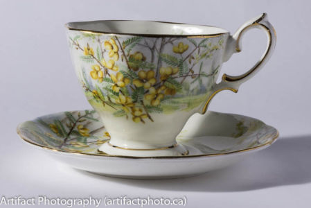 Teacup Collection - Artifactphoto.ca-1202