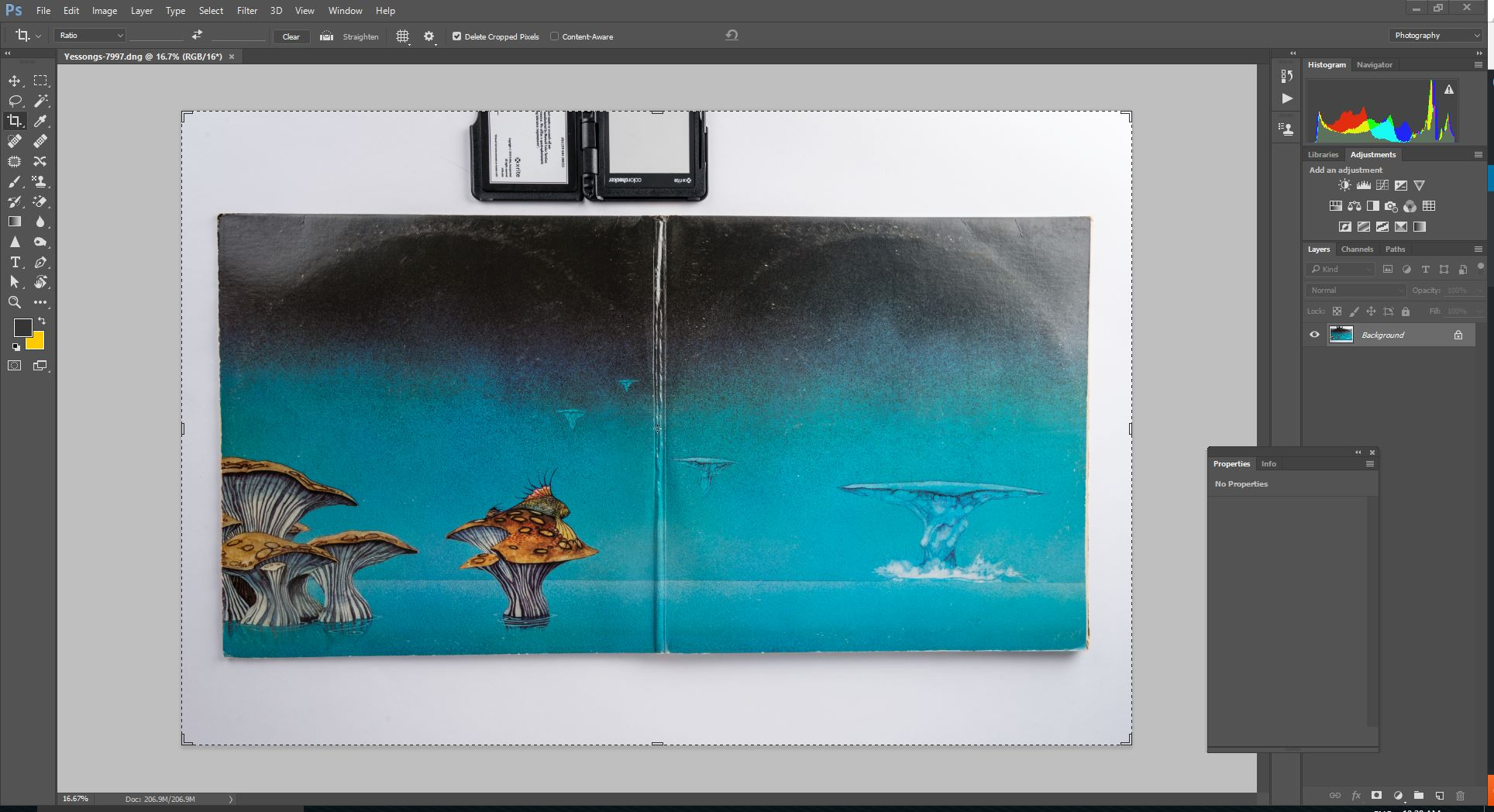 Photoshop main screen showing untouched image